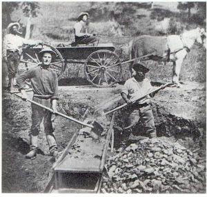 Miners, in inglese minatori